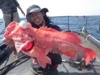 FISH5084s