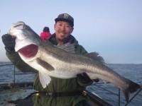 FISH6474es