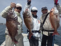 FISH6947