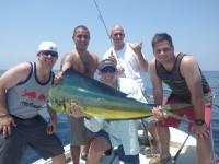 FISH7429