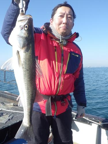 FISH6346s