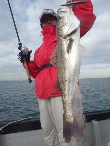 FISH6382s