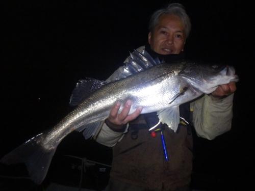 FISH6392s
