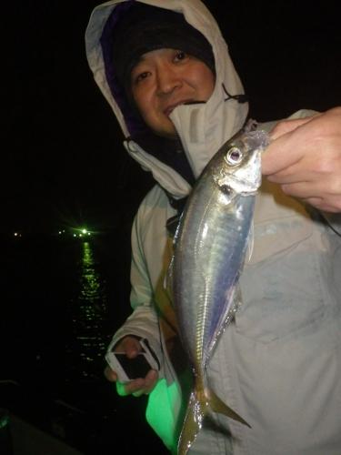 FISH6393s