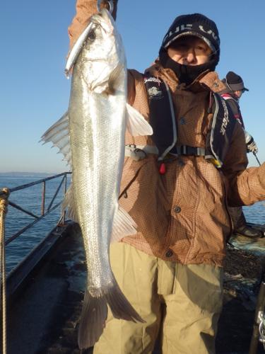 FISH6412s