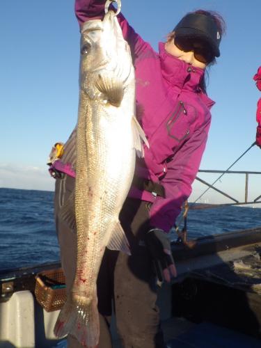 FISH6422s
