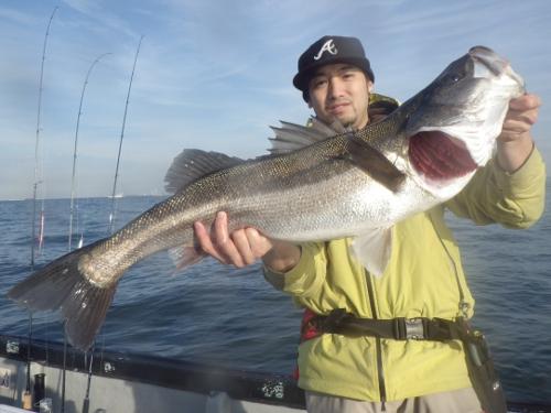 FISH6497s