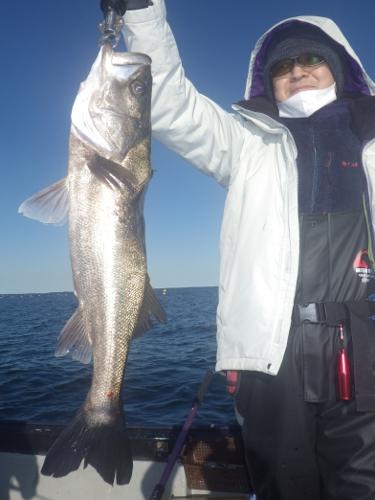 FISH6503s