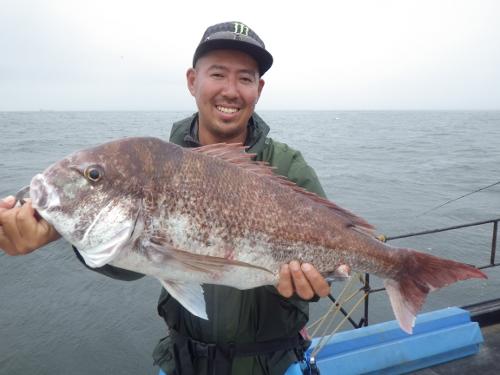 FISH5334s