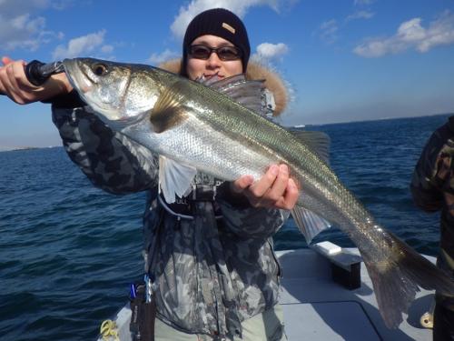 FISH6653s