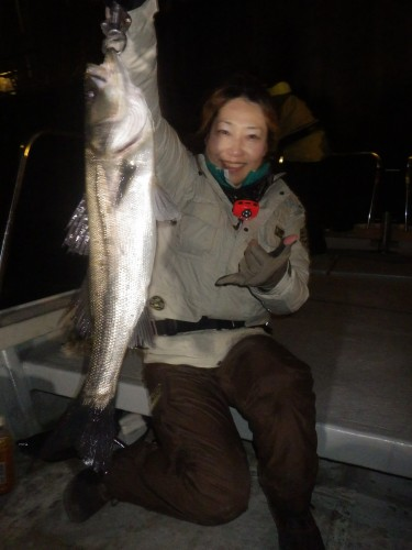 FISH6772