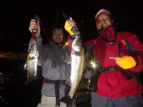 FISH6783