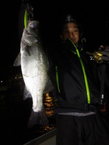 FISH6834