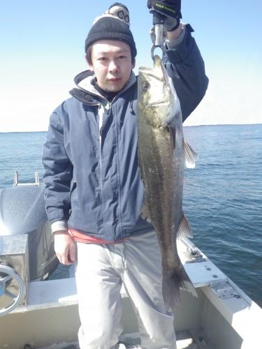 FISH6858s