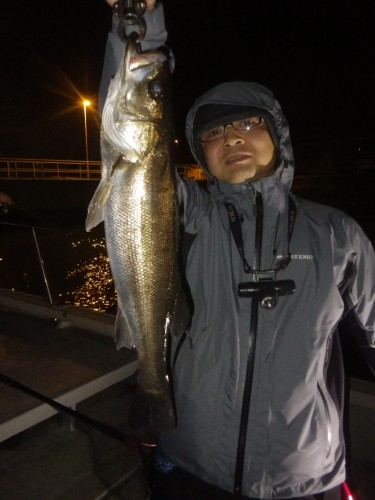 FISH7003