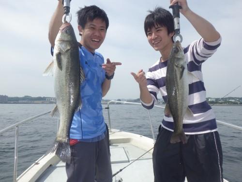 FISH7148