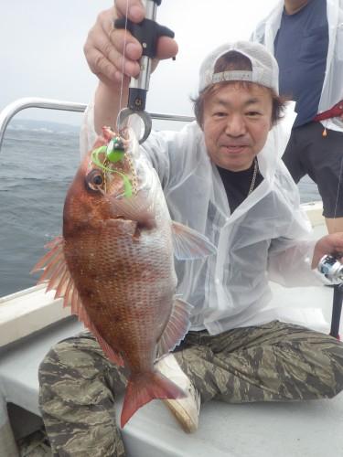 FISH7261