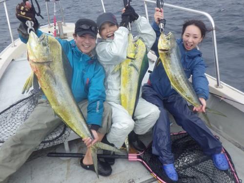 FISH7375