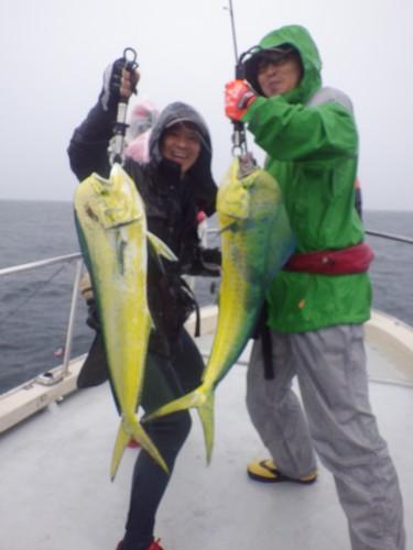 FISH7380