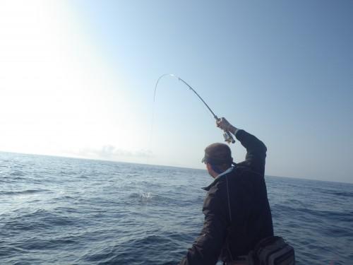 FISH7406