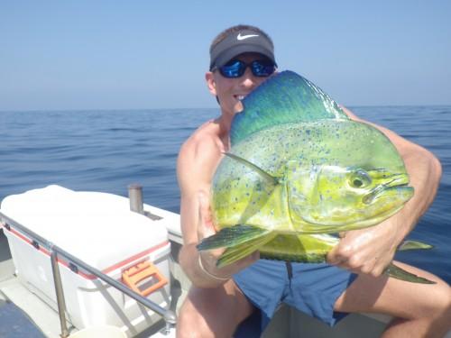 FISH7419