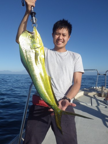 FISH7460