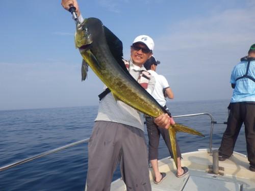 FISH7487