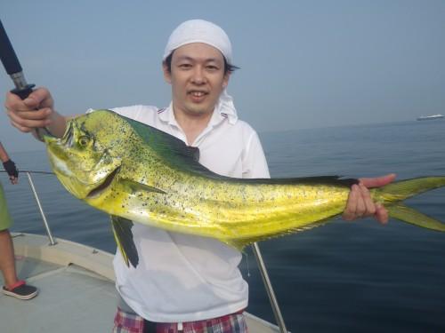 FISH7507