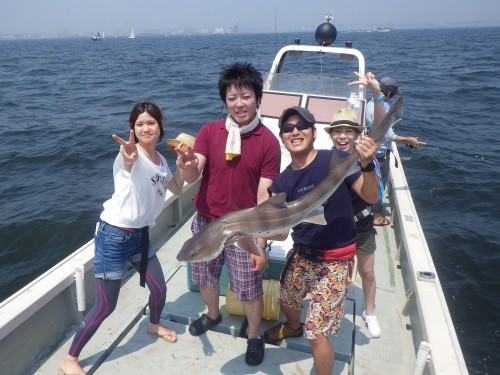 FISH7523