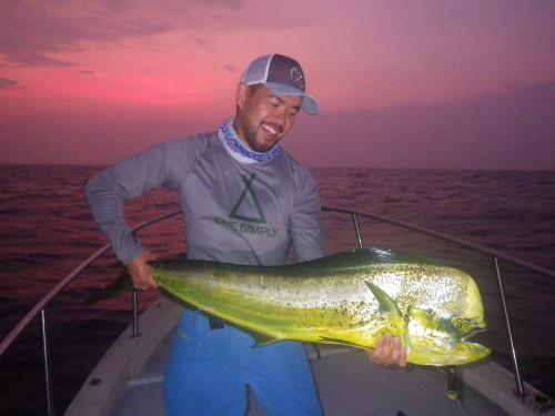 FISH7529