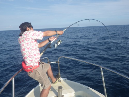 FISH7588
