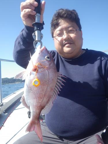 FISH7879