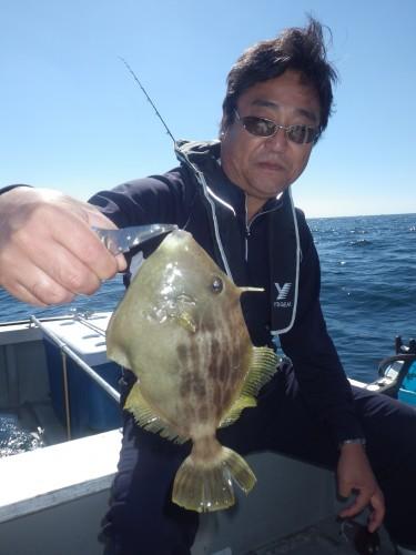FISH7886