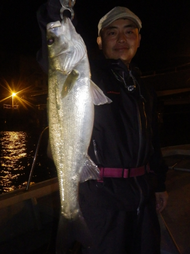FISH7893s