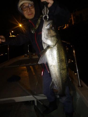 FISH7895