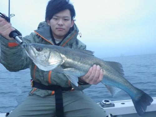 FISH7904s