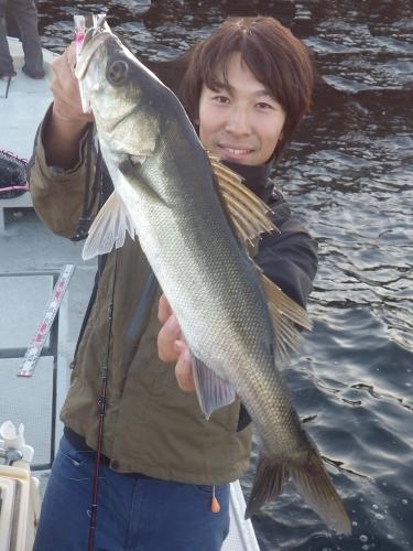 FISH7924s