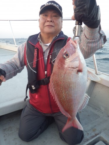 FISH7937