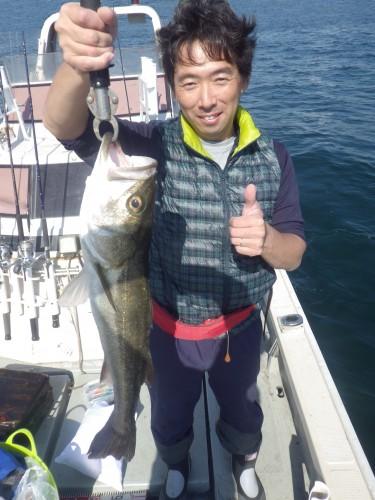 FISH8013e