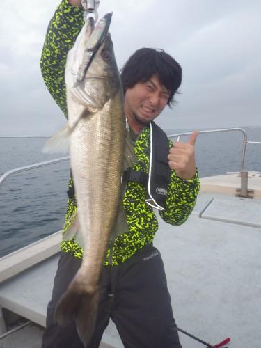 FISH8032e