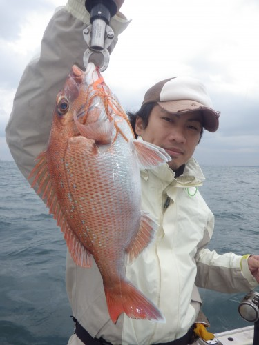 FISH8056