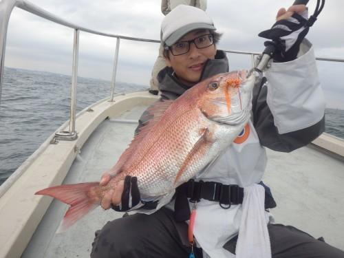 FISH8060