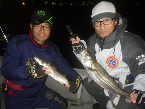 FISH8069