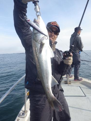 FISH8075e