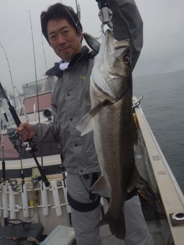 FISH8100e