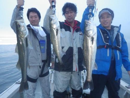 FISH8105e