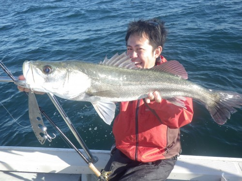 FISH8111