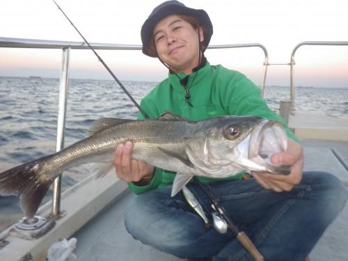 FISH8113