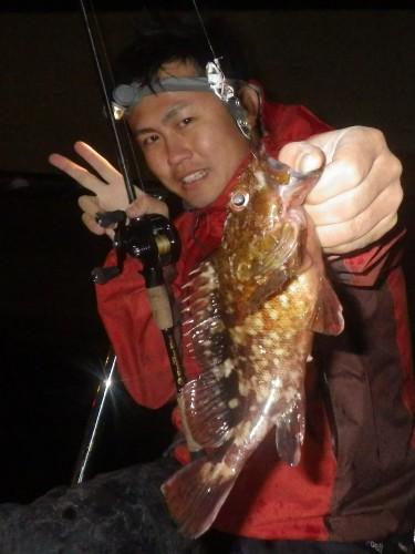 FISH8116e