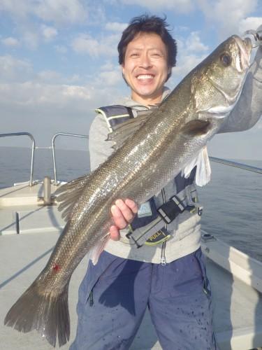 FISH8135e